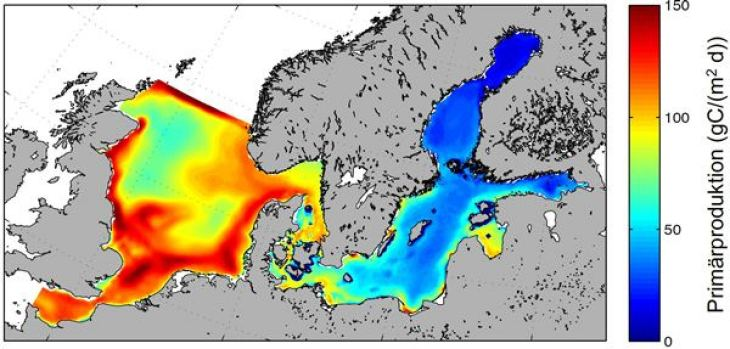 Simulated mean (60 years) phytoplankton production in North Sea and Baltic Sea from the coupled ecosystem model ECOSMO.