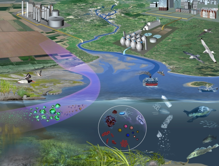 Schematic of polluted coastal sea