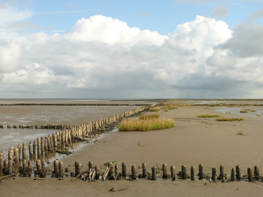 the Wadden Sea and seafloors of the North Sea coast