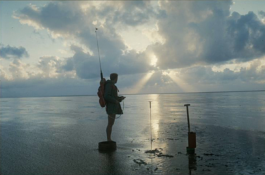 Man standing in the Wadden Sea