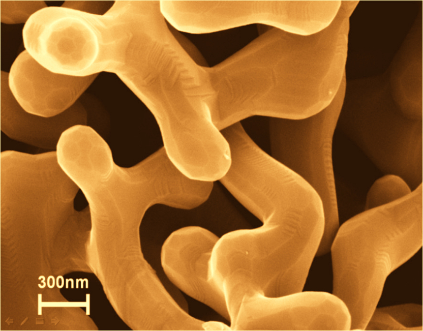 Nanoporous Gold: Clearly identified by the sponge-like structure.