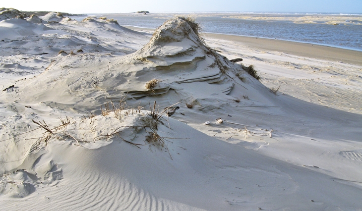 Primary dunes after a storm surge