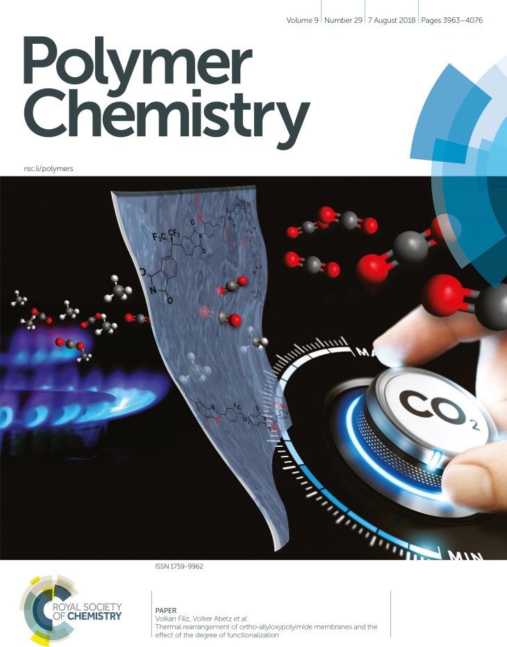 Cover Page Pol Chem Juli 2018 David Meis