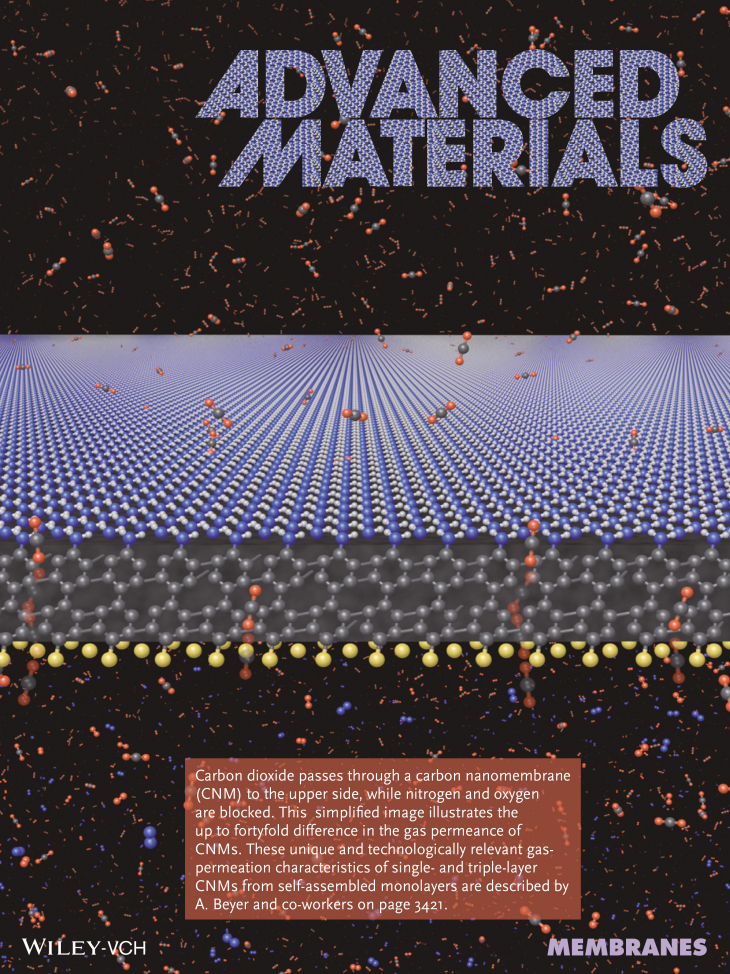 Advanced Materials 21 14 3420-frontispiece