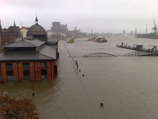 Fish market Hamburg under water