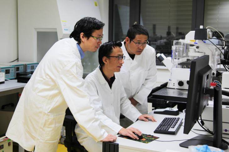 Xun Xu, Zijun Deng and Weiwei Wang (alle HZG) sind Erstautoren die Studie.